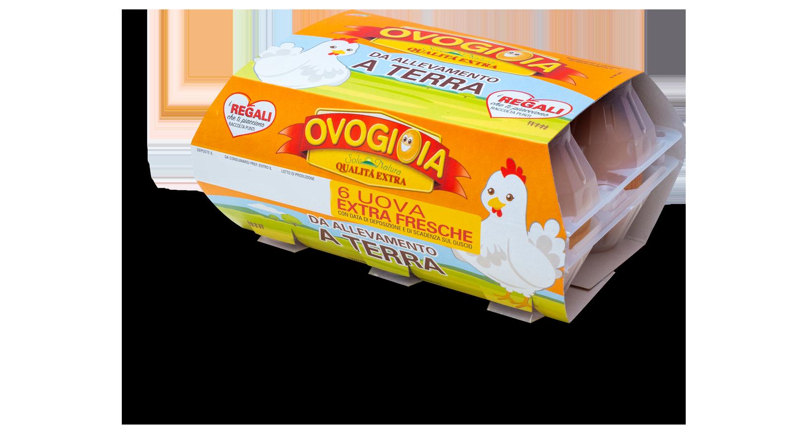 6 uova extra fresche